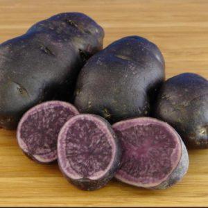 Картофель семенной Сирень