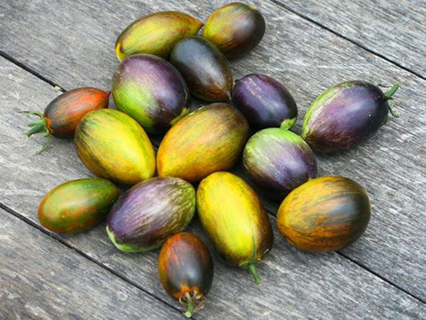 Томат Атомный виноград (гроздь) Брэда
